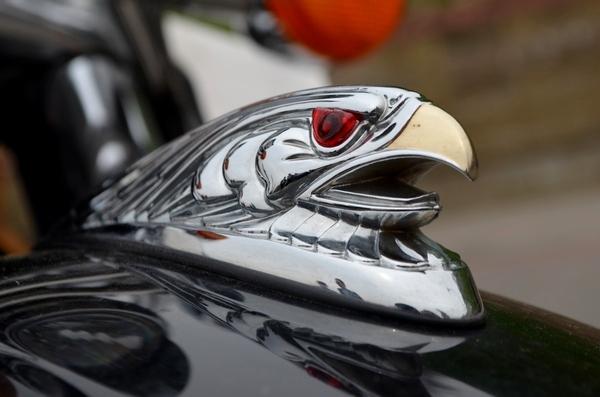 biker20